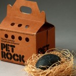 "Gary Dahl's pet rock ""invention"" made him a millionaire!"